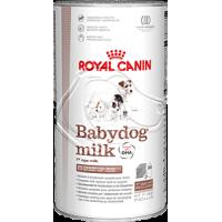 Babydog Milk